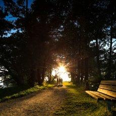 Människor i solnedgång på piren, Strandängen, Bromölla